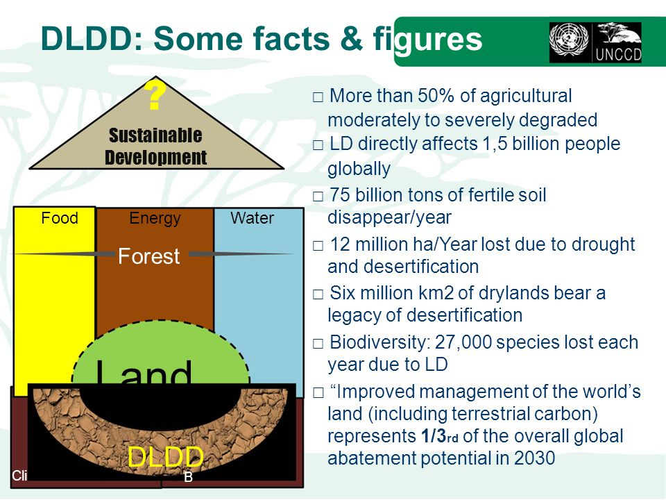 DLDD: Some facts & figures .