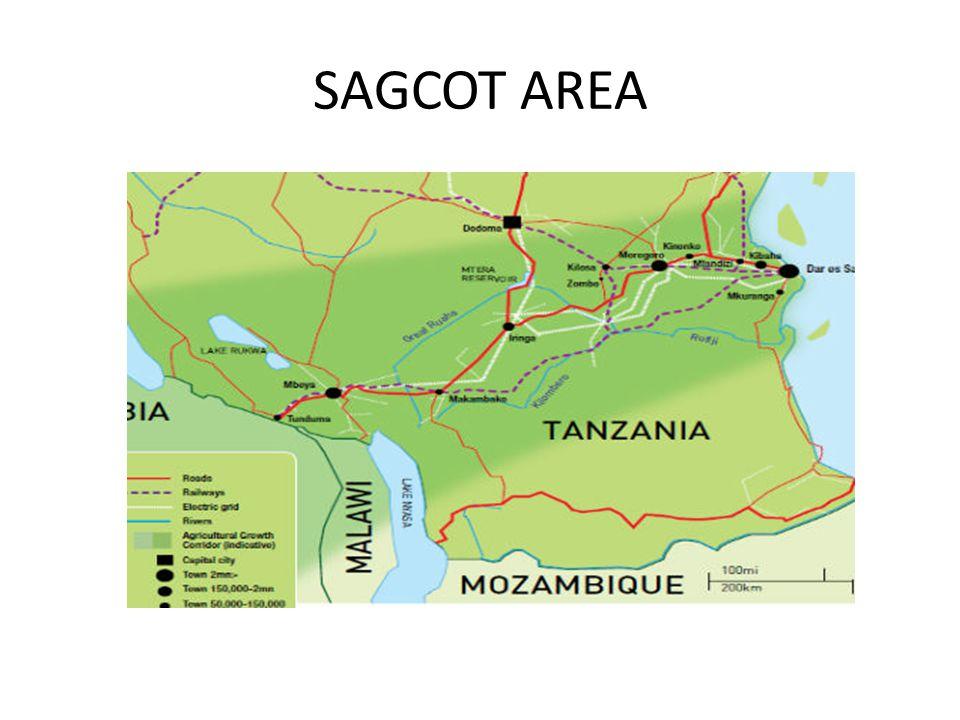 SAGCOT AREA