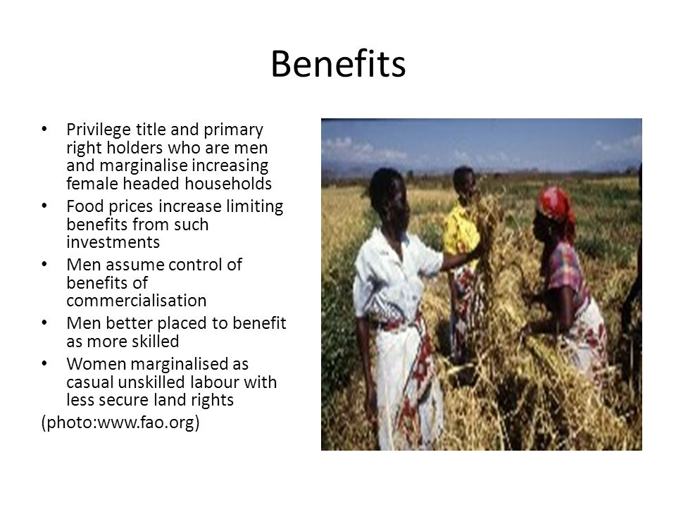 Gendered Costs Women are more involved in agriculture than men and therefore have heavier burdens of adjusting in land grabs Drawn away from food production if labour intensive Substituting food and sourcing subsistence Adjusting to loss of biodiversity Renegotiating resource access More demands on labour increase pressure on domestic responsibilities and income generation which leads to women giving up ( photo:www.newskenya-wordpress.com)