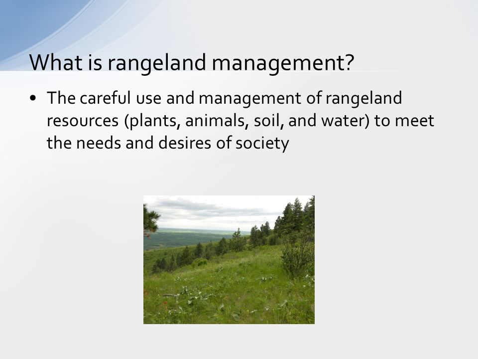 The careful use and management of rangeland resources (plants, animals, soil, and water) to meet the needs and desires of society What is rangeland management