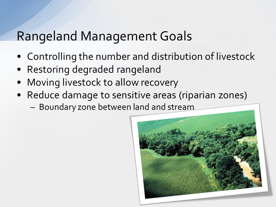 Controlling the number and distribution of livestock Restoring degraded rangeland Moving livestock to allow recovery Reduce damage to sensitive areas (riparian zones) –Boundary zone between land and stream Rangeland Management Goals