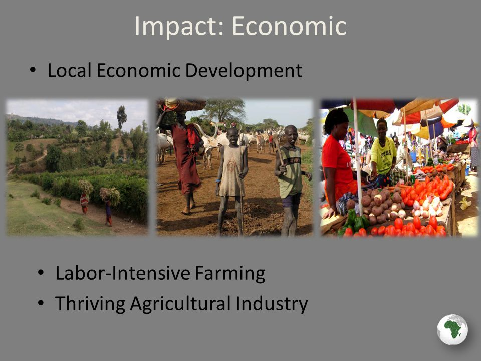 Impact: Economic Local Economic Development Labor-Intensive Farming Thriving Agricultural Industry