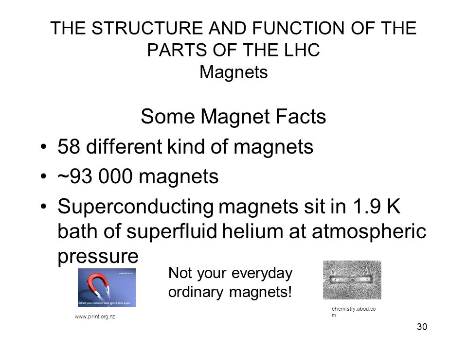 30 THE STRUCTURE AND FUNCTION OF THE PARTS OF THE LHC Magnets Some Magnet Facts 58 different kind of magnets ~93 000 magnets Superconducting magnets s