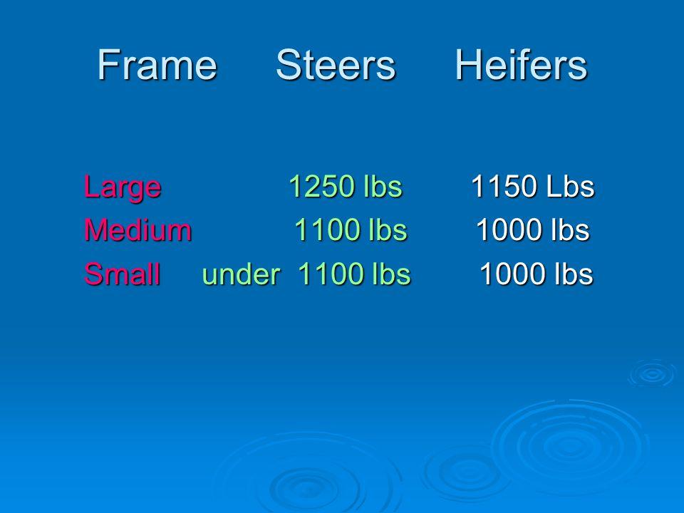 Frame Steers Heifers Large 1250 lbs 1150 Lbs Large 1250 lbs 1150 Lbs Medium 1100 lbs 1000 lbs Medium 1100 lbs 1000 lbs Small under 1100 lbs 1000 lbs Small under 1100 lbs 1000 lbs