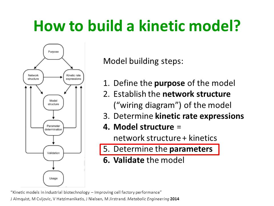 How to build a kinetic model.