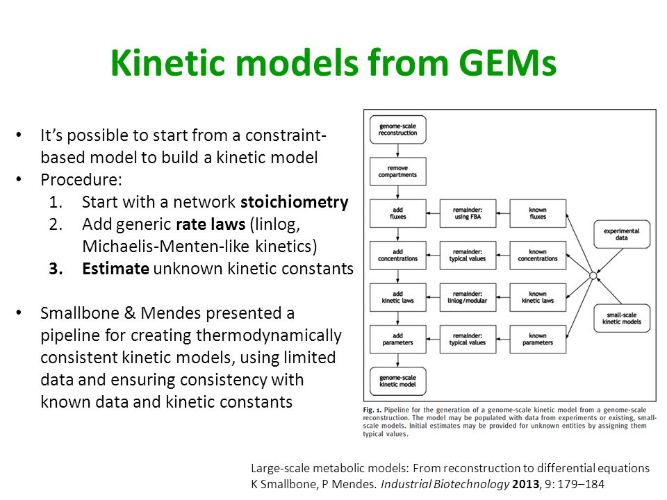 Kinetic models from GEMs It's possible to start from a constraint- based model to build a kinetic model Procedure: 1.Start with a network stoichiometry 2.Add generic rate laws (linlog, Michaelis-Menten-like kinetics) 3.Estimate unknown kinetic constants Smallbone & Mendes presented a pipeline for creating thermodynamically consistent kinetic models, using limited data and ensuring consistency with known data and kinetic constants Large-scale metabolic models: From reconstruction to differential equations K Smallbone, P Mendes.