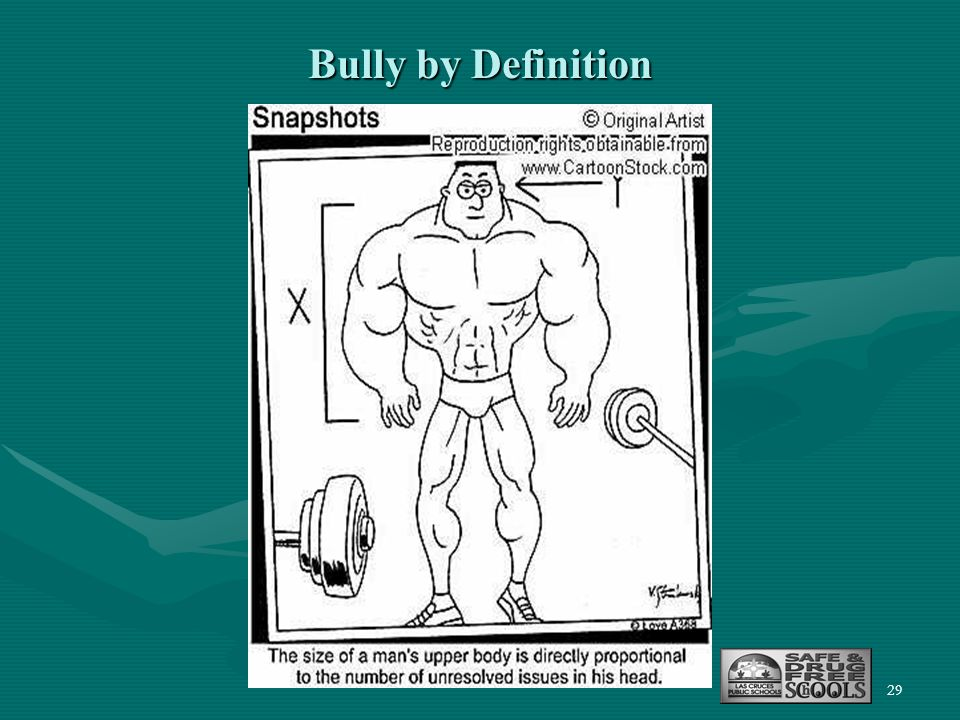 29 Bully by Definition