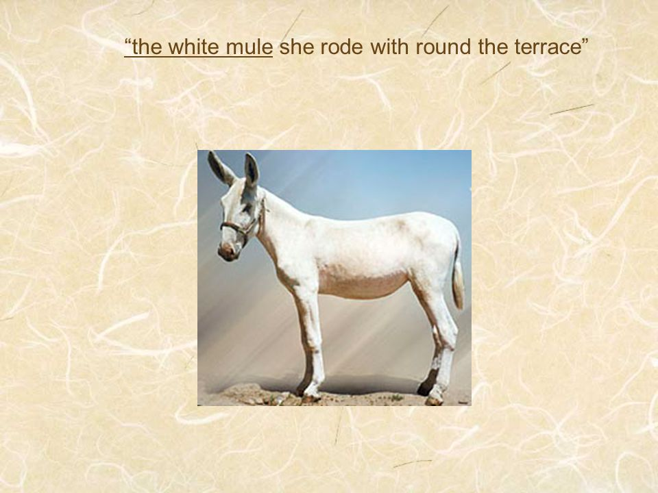 """the white mule she rode with round the terrace"""