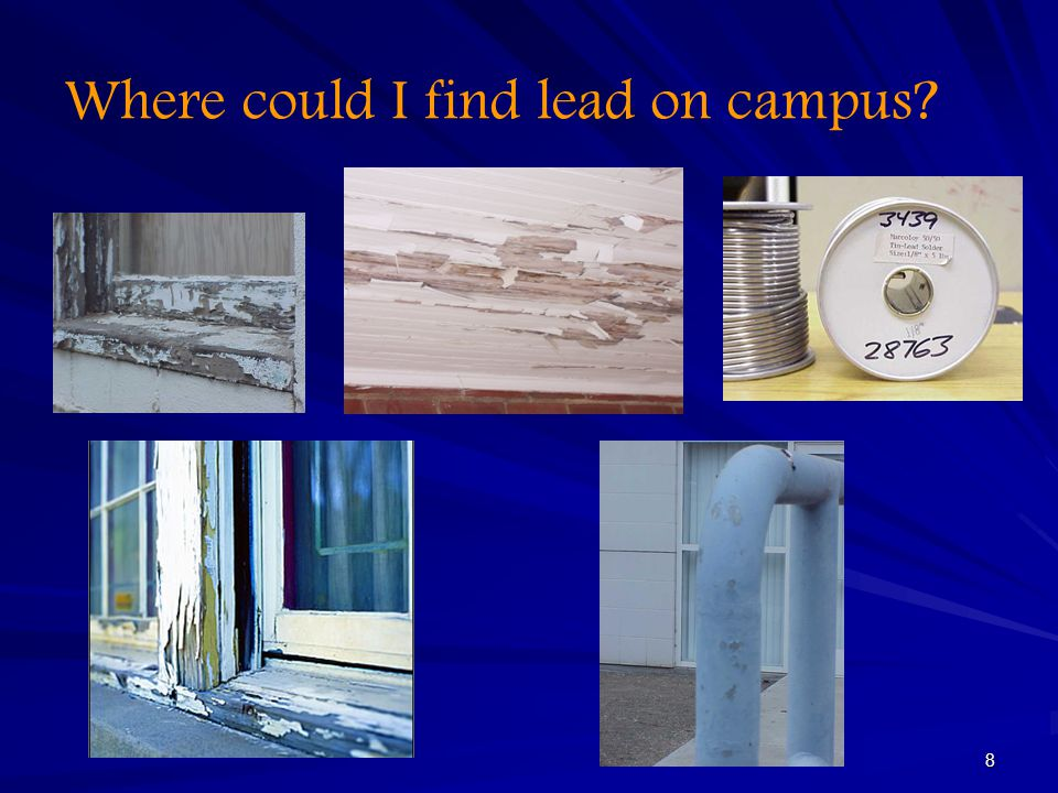 8 Where could I find lead on campus?