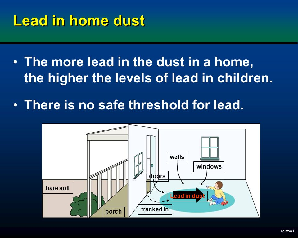 CS109909-1 Lead in home dust The more lead in the dust in a home, the higher the levels of lead in children. There is no safe threshold for lead. bare