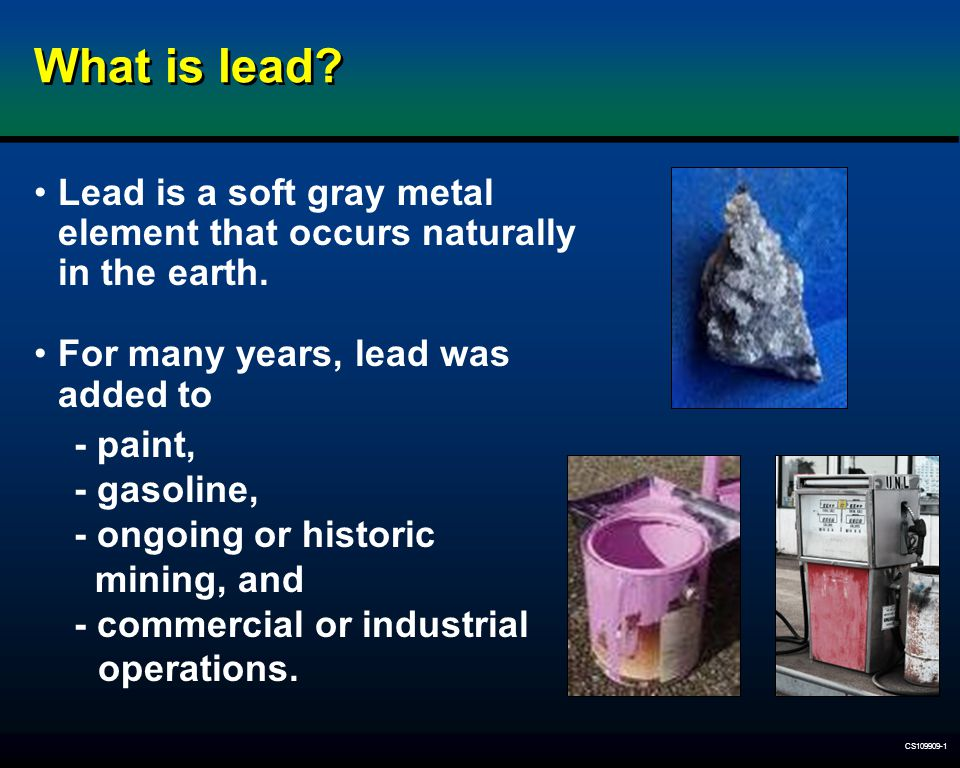 CS109909-1 What are the effects of lead exposure on young children.