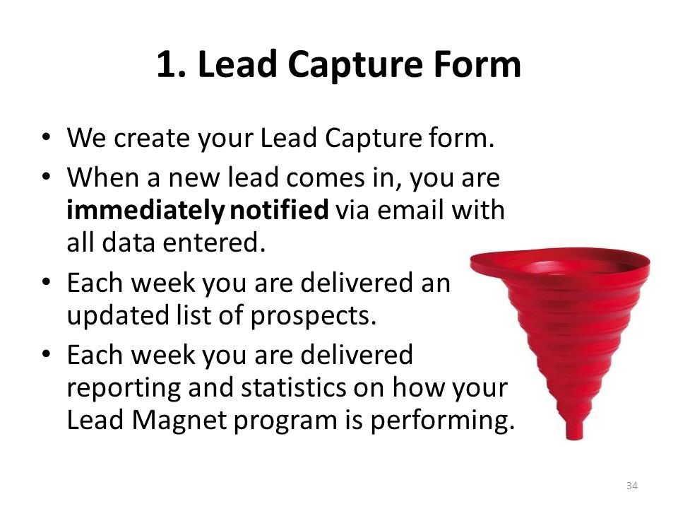 1. Lead Capture Form We create your Lead Capture form.