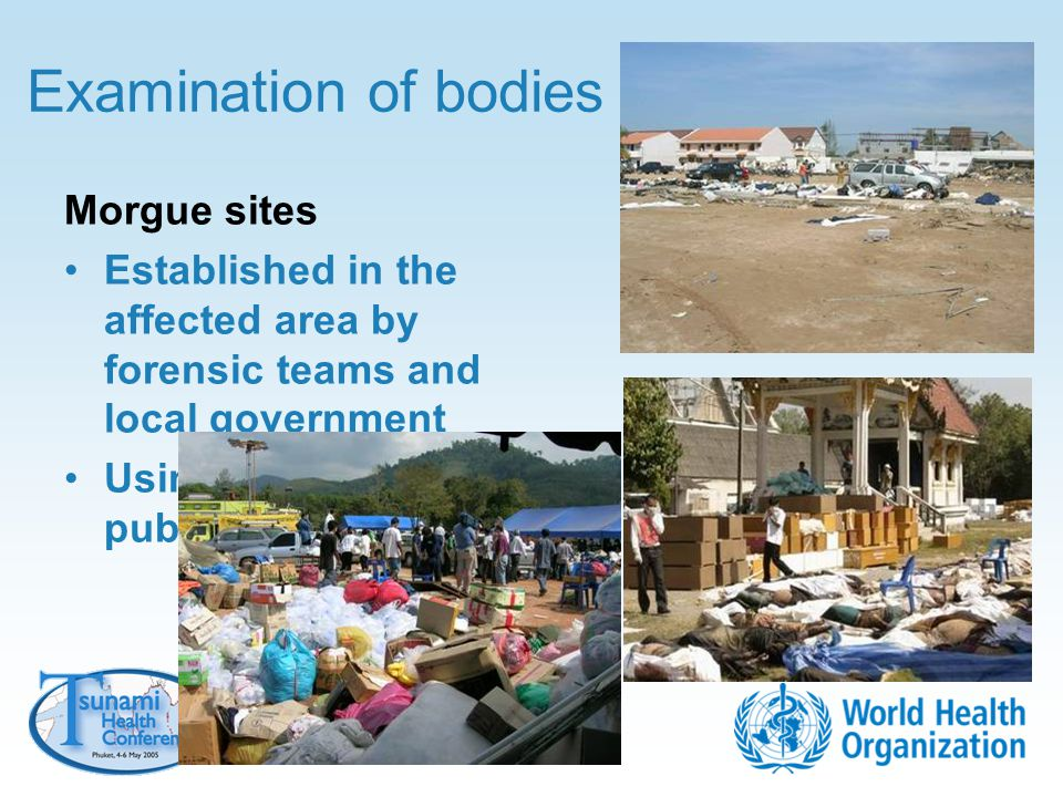 Examination of bodies Morgue sites Established in the affected area by forensic teams and local government Using temples or public areas
