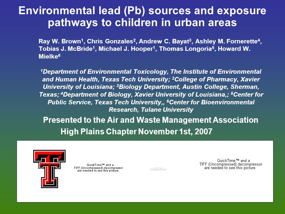 Environmental lead (Pb) sources and exposure pathways to children in urban areas Ray W.