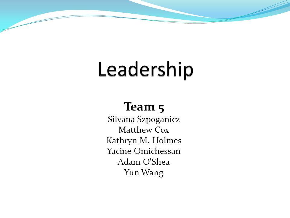 Team 5 Silvana Szpoganicz Matthew Cox Kathryn M. Holmes Yacine Omichessan Adam O Shea Yun Wang