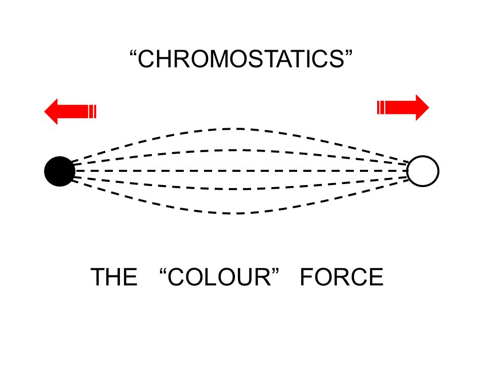 """THE """"COLOUR"""" FORCE"""