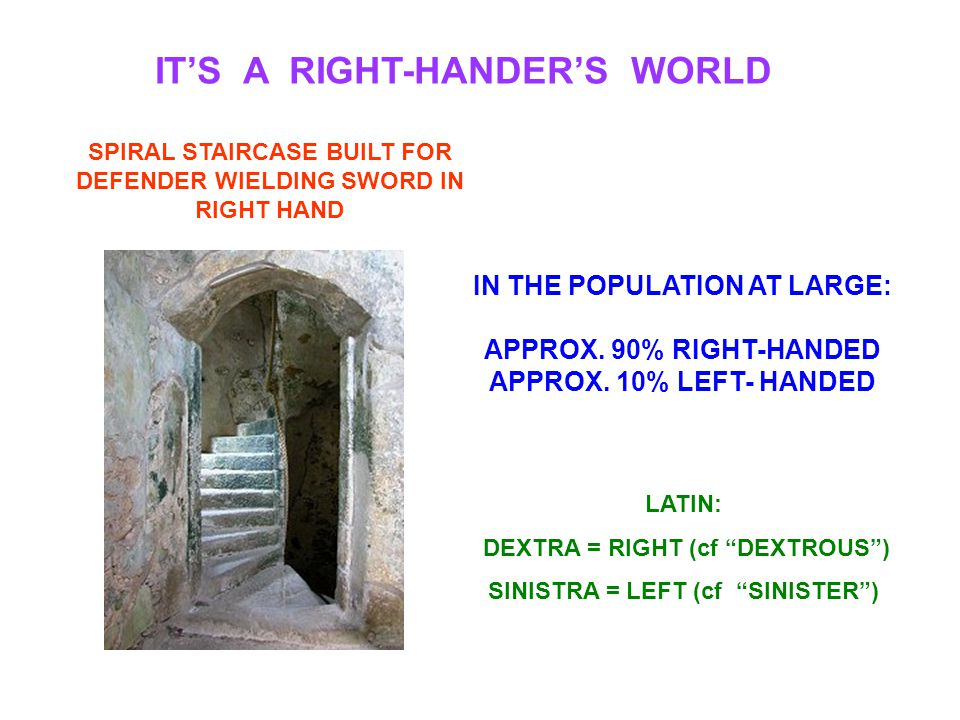 """IT'S A RIGHT-HANDER'S WORLD LATIN: DEXTRA = RIGHT (cf """"DEXTROUS"""") SINISTRA = LEFT (cf """"SINISTER"""") SPIRAL STAIRCASE BUILT FOR DEFENDER WIELDING SWORD I"""