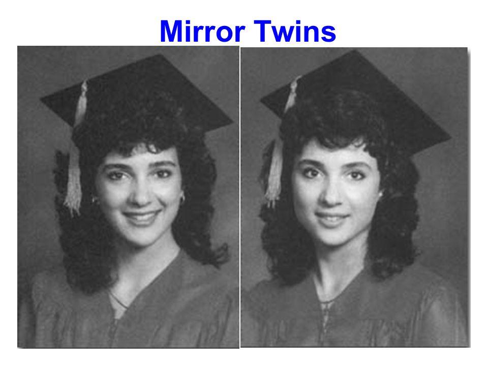 Mirror Twins