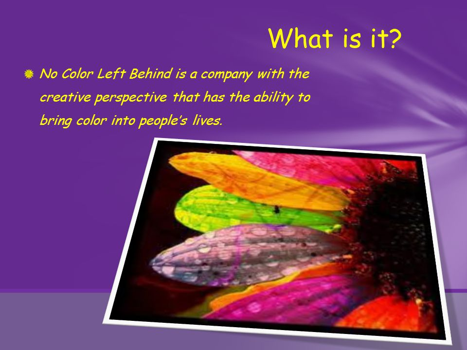 No Color Left Behind is a company with the creative perspective that has the ability to bring color into people's lives. What is it?