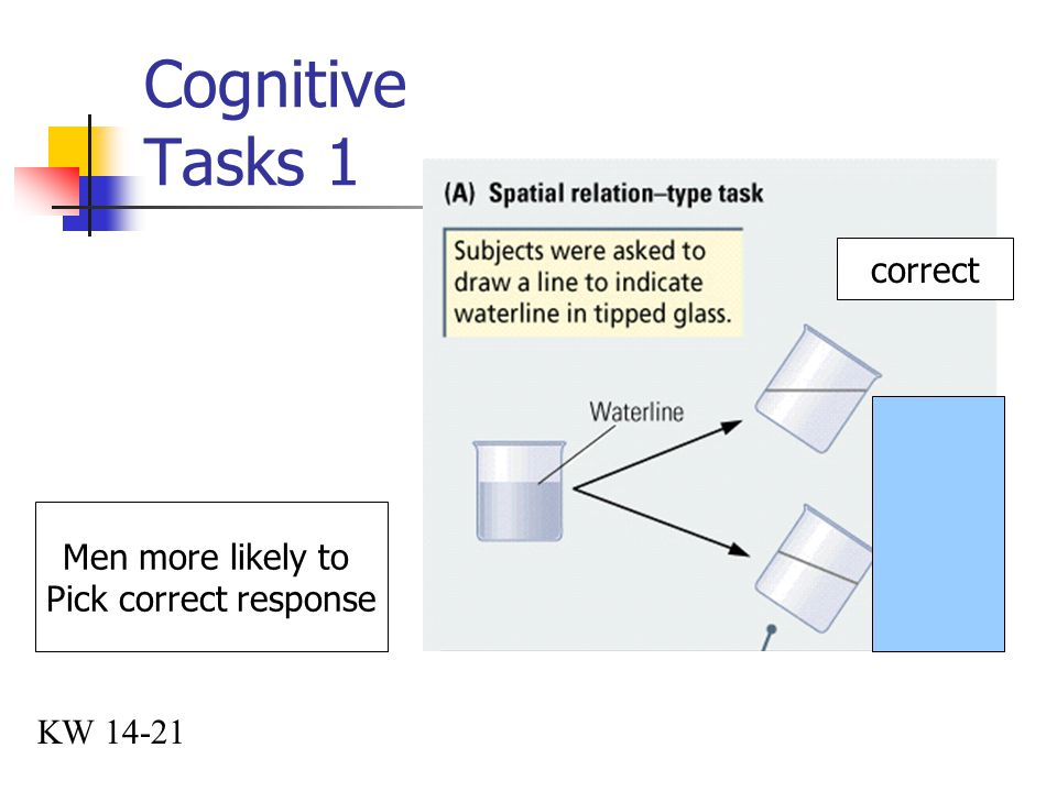 Cognitive Tasks 1 KW 14-21 correct Men more likely to Pick correct response