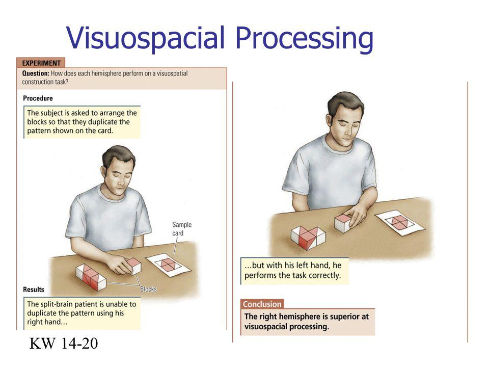 Visuospacial Processing KW 14-20