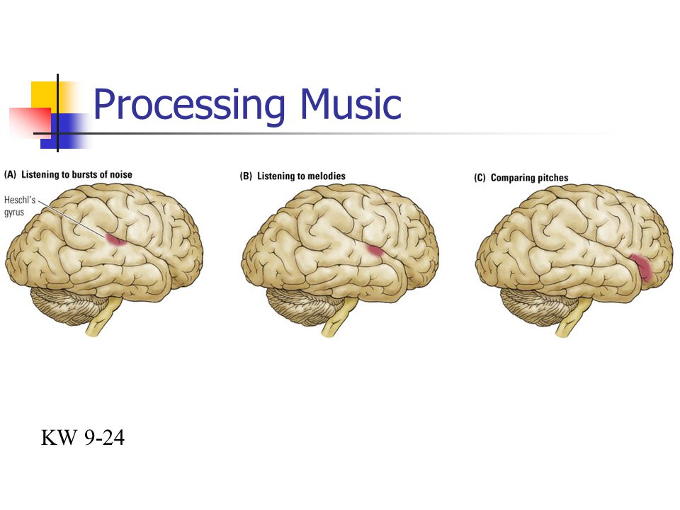 Processing Music KW 9-24