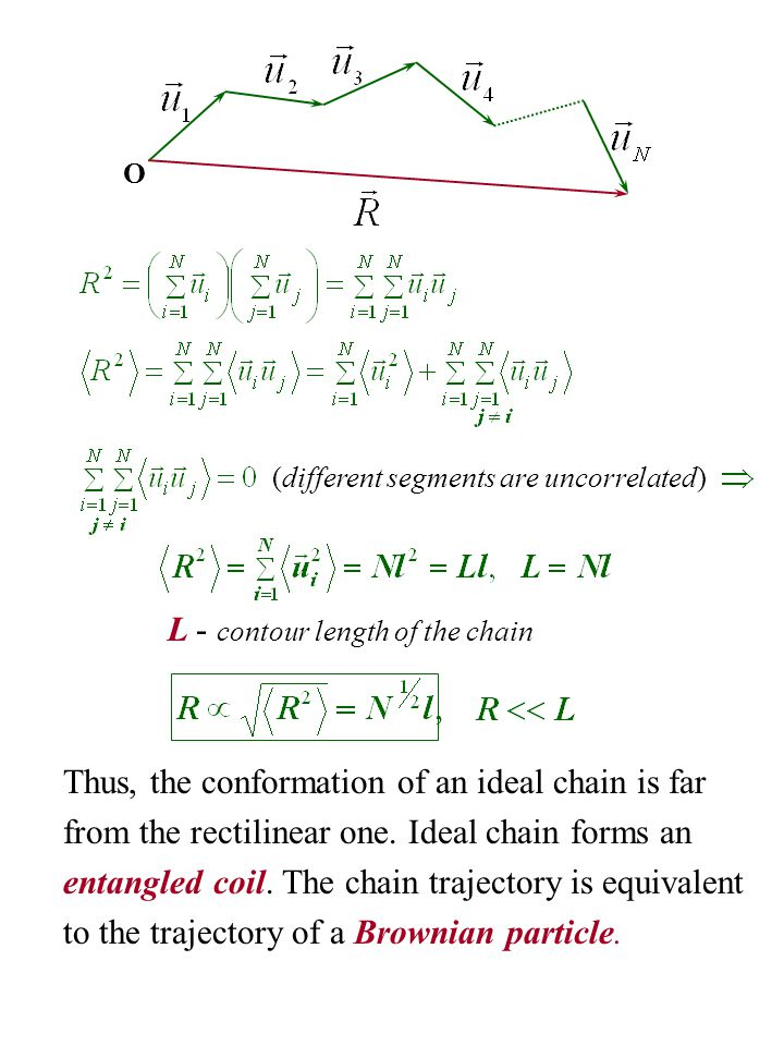 (different segments are uncorrelated) L - contour length of the chain Thus, the conformation of an ideal chain is far from the rectilinear one. Ideal