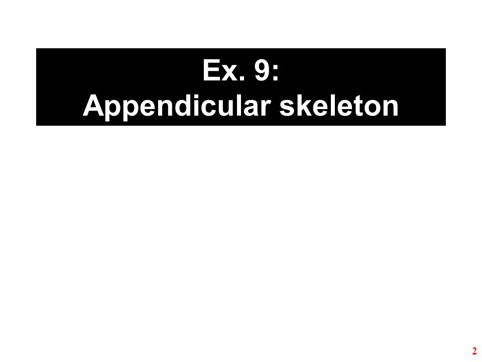 Ex. 11: Articulations and body movements 33 Required structures are highlighted.