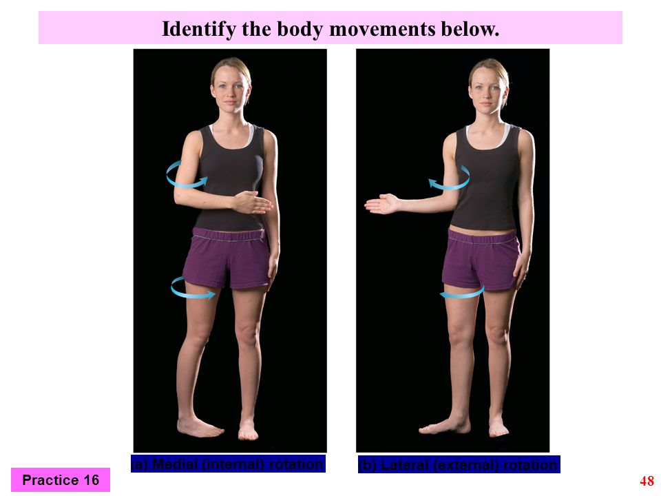 (b) Lateral (external) rotation ( a) Medial (internal) rotation Identify the body movements below. 48 Practice 16