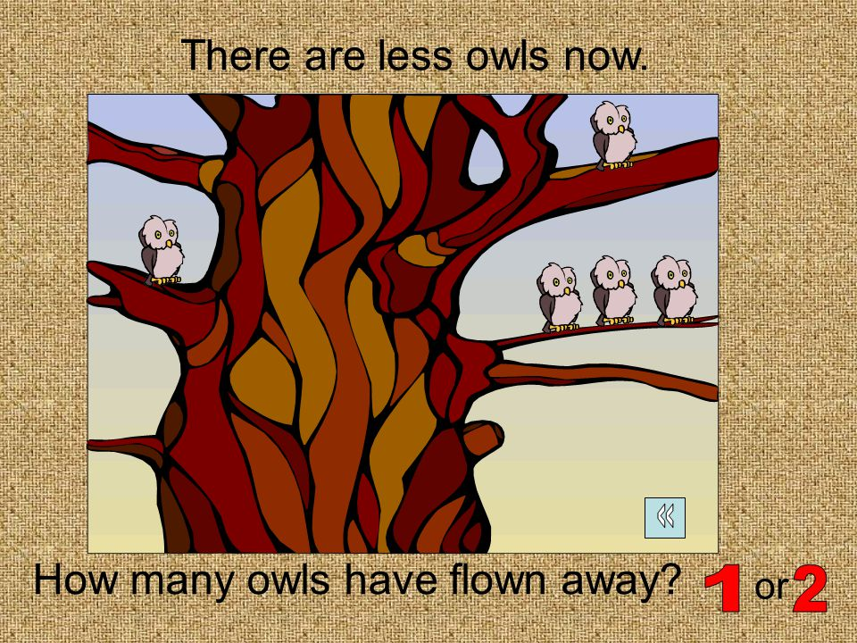 That is correct! There are now 2 more owls
