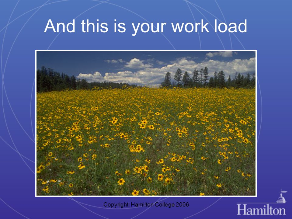 Copyright: Hamilton College 2006 And this is your work load