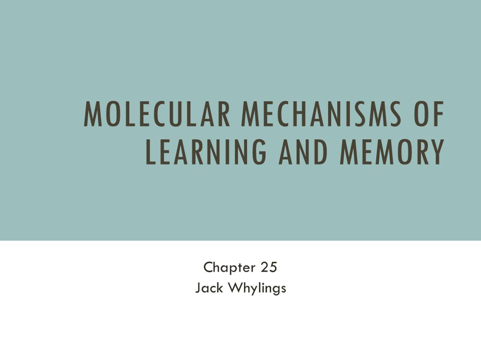 MOLECULAR MECHANISMS OF LEARNING AND MEMORY Chapter 25 Jack Whylings