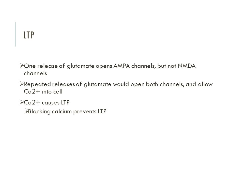 LTP  One release of glutamate opens AMPA channels, but not NMDA channels  Repeated releases of glutamate would open both channels, and allow Ca2+ into cell  Ca2+ causes LTP  Blocking calcium prevents LTP