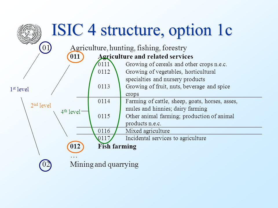 ISIC 4 structure, option 1c 01Agriculture, hunting, fishing, forestry 011Agriculture and related services 0111Growing of cereals and other crops n.e.c