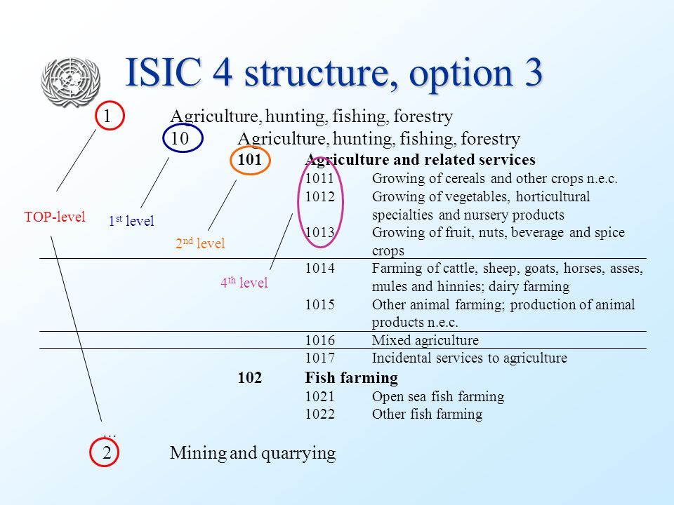 ISIC 4 structure, option 3 1Agriculture, hunting, fishing, forestry 10Agriculture, hunting, fishing, forestry 101Agriculture and related services 1011