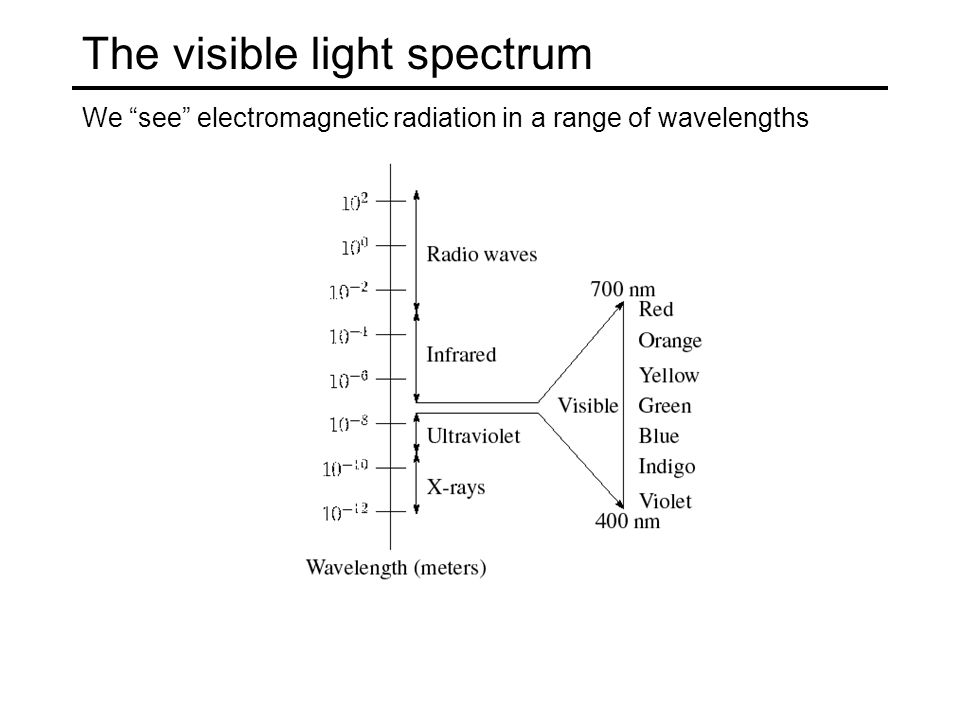 The visible light spectrum We see electromagnetic radiation in a range of wavelengths