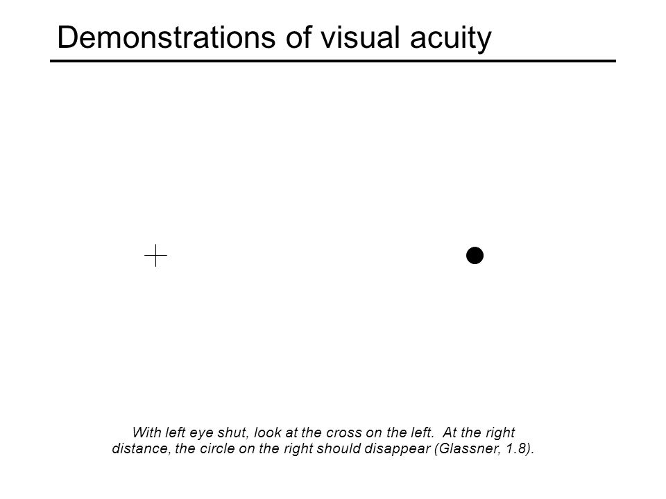 Demonstrations of visual acuity With left eye shut, look at the cross on the left.