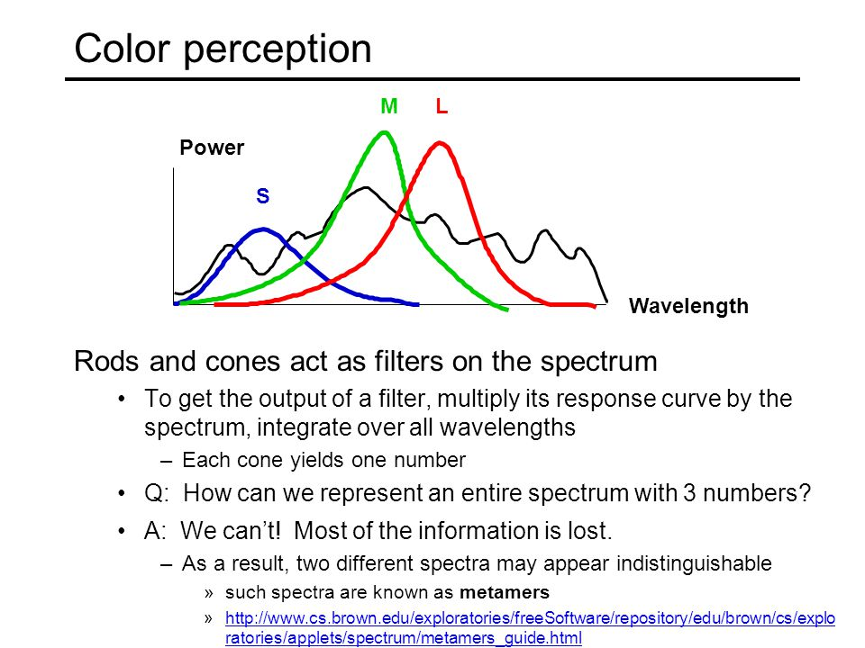 Color perception Rods and cones act as filters on the spectrum To get the output of a filter, multiply its response curve by the spectrum, integrate over all wavelengths –Each cone yields one number Q: How can we represent an entire spectrum with 3 numbers.