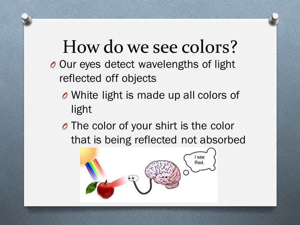 How do we see colors? O Our eyes detect wavelengths of light reflected off objects O White light is made up all colors of light O The color of your sh