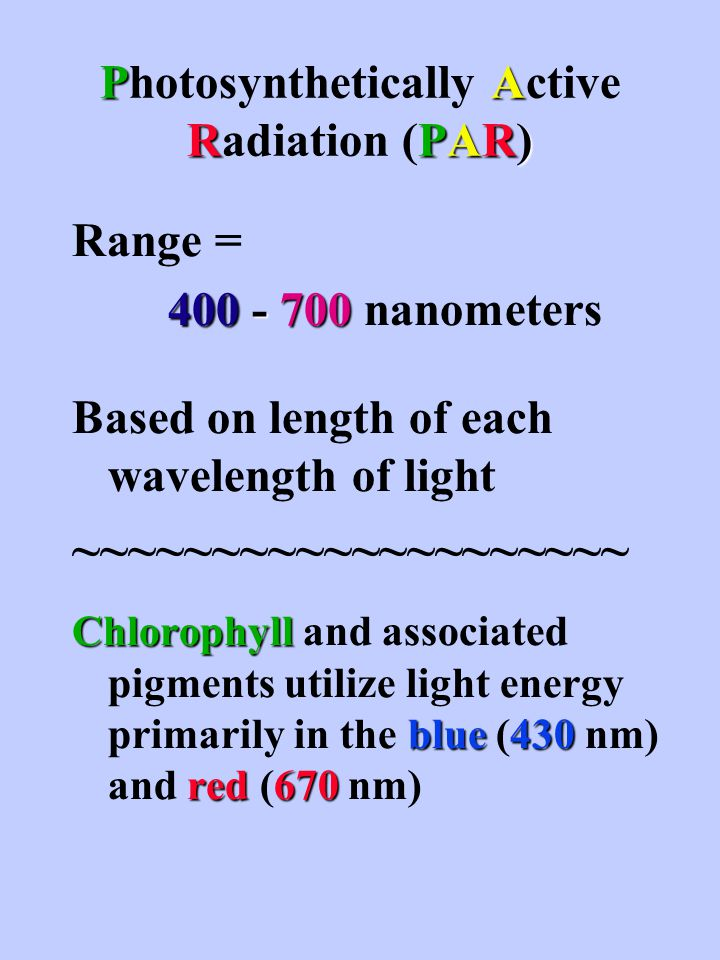 PA RPAR) Photosynthetically Active Radiation (PAR) Range = 400 - 700 400 - 700 nanometers Based on length of each wavelength of light ~~~~~~~~~~~~~~~~~~~~ Chlorophyll blue430 red 670 Chlorophyll and associated pigments utilize light energy primarily in the blue (430 nm) and red (670 nm)