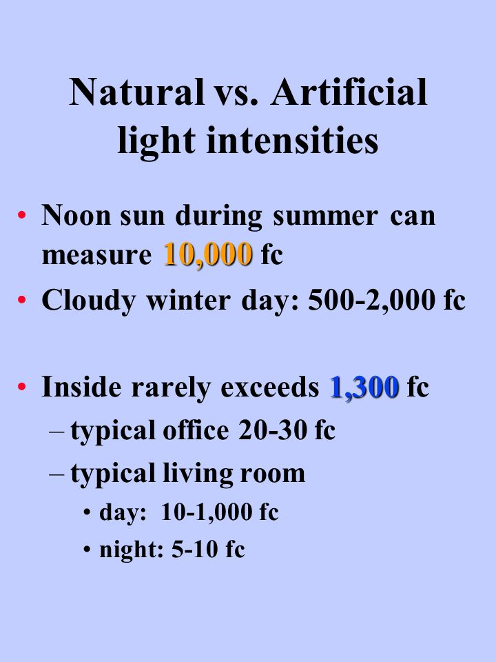 Natural vs. Artificial light intensities 10,000Noon sun during summer can measure 10,000 fc Cloudy winter day: 500-2,000 fc 1,300Inside rarely exceeds