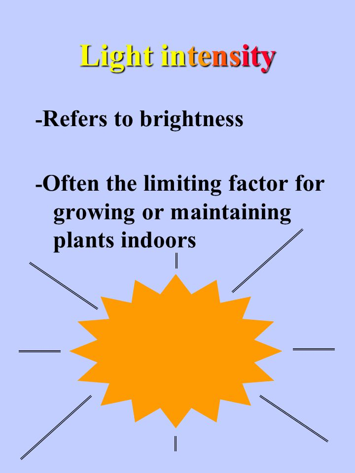 Minimum light required for plant maintainance??? 100 fc