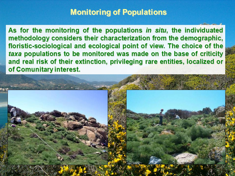 Monitoring of Populations As for the monitoring of the populations in situ, the individuated methodology considers their characterization from the dem