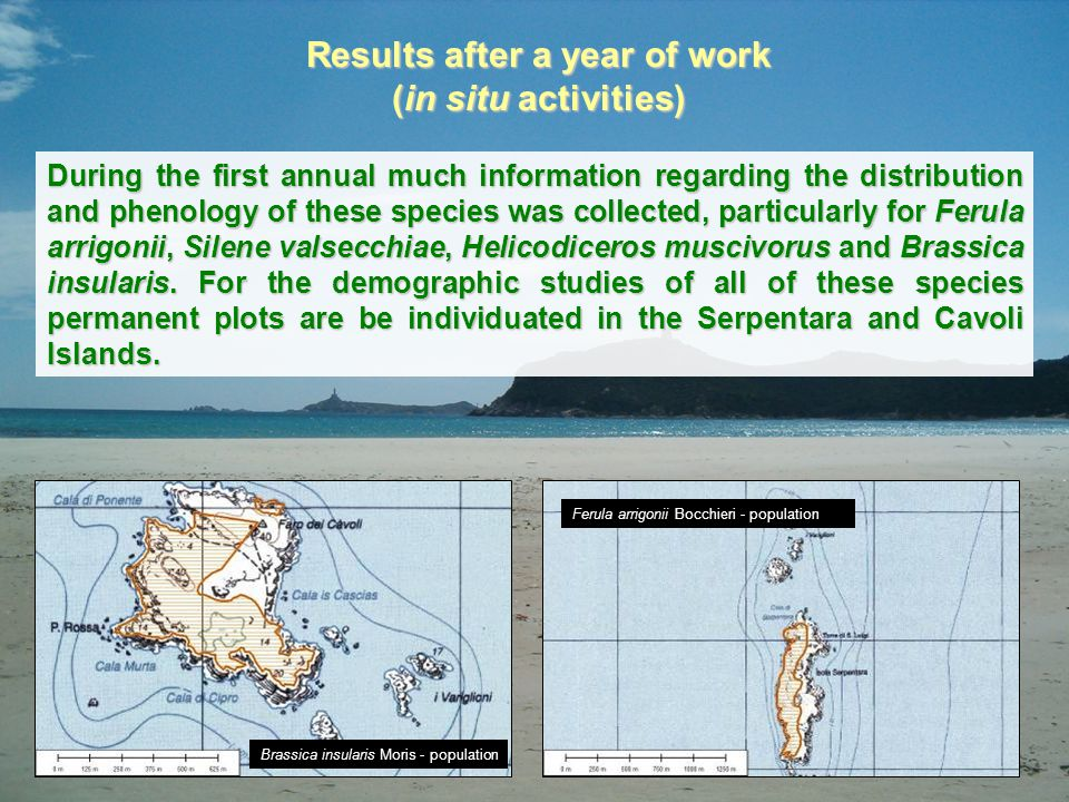 Results after a year of work (in situ activities) During the first annual much information regarding the distribution and phenology of these species w