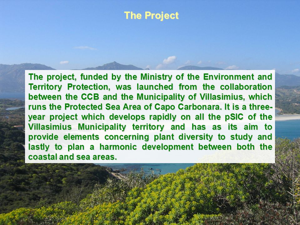 In this way, it aims at unifying the environmental protection secured by Protected Sea Area with that relative to the pSIC of the establishing net Natura 2000, waiting for the imminent activation of the Management Plans, funded by the Sardinia Region through the Structural Funds (POR 2000-2006, Axis I, measure 1.5).