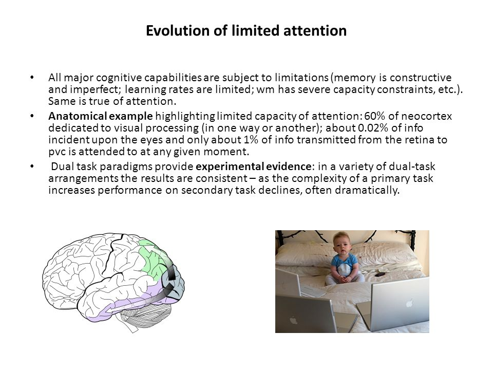 Evolution of limited attention All major cognitive capabilities are subject to limitations (memory is constructive and imperfect; learning rates are limited; wm has severe capacity constraints, etc.).