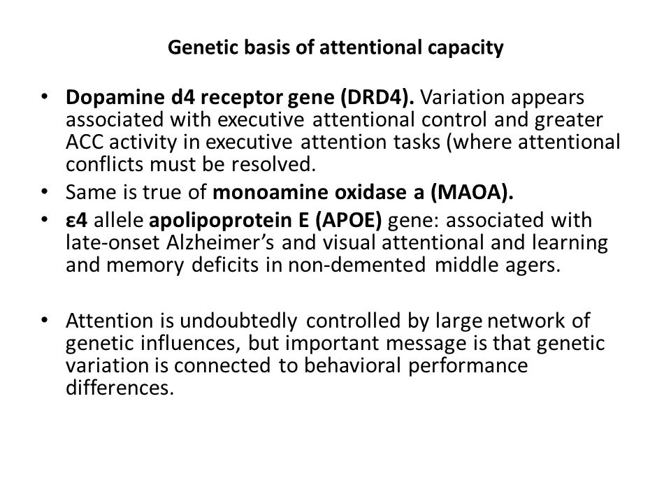 Genetic basis of attentional capacity Dopamine d4 receptor gene (DRD4). Variation appears associated with executive attentional control and greater AC