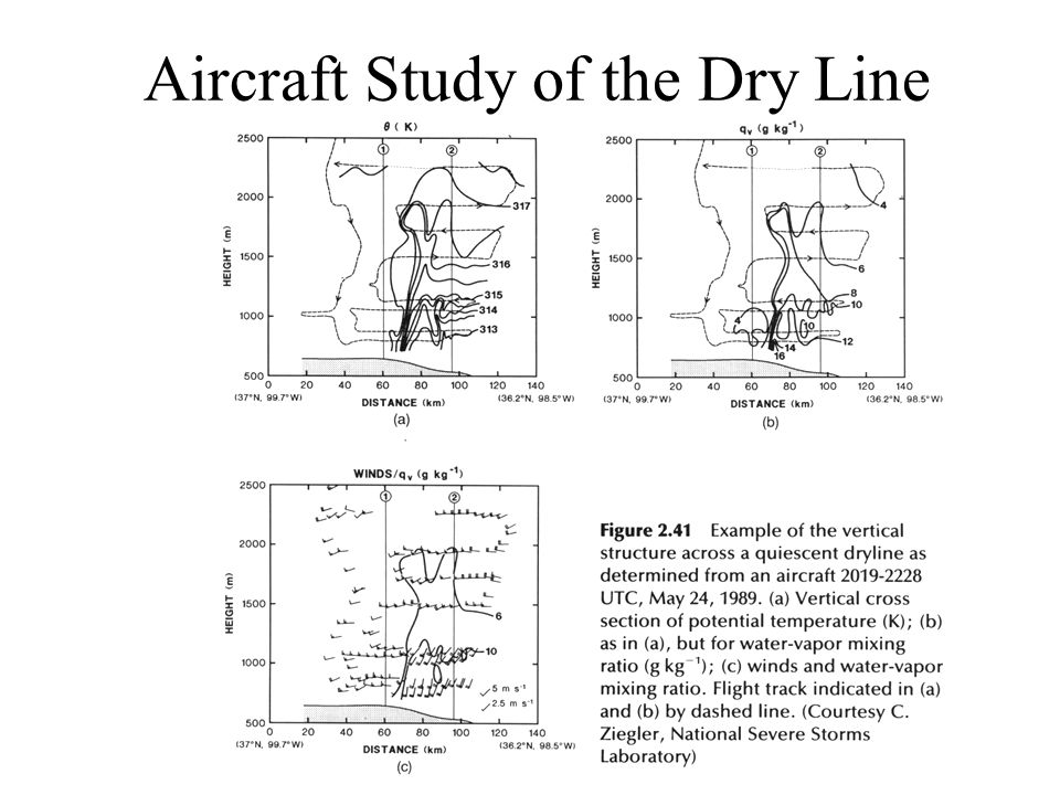 Aircraft Study of the Dry Line