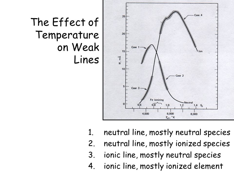 The Effect of Temperature on Weak Lines 1.neutral line, mostly neutral species 2.neutral line, mostly ionized species 3.ionic line, mostly neutral species 4.ionic line, mostly ionized element