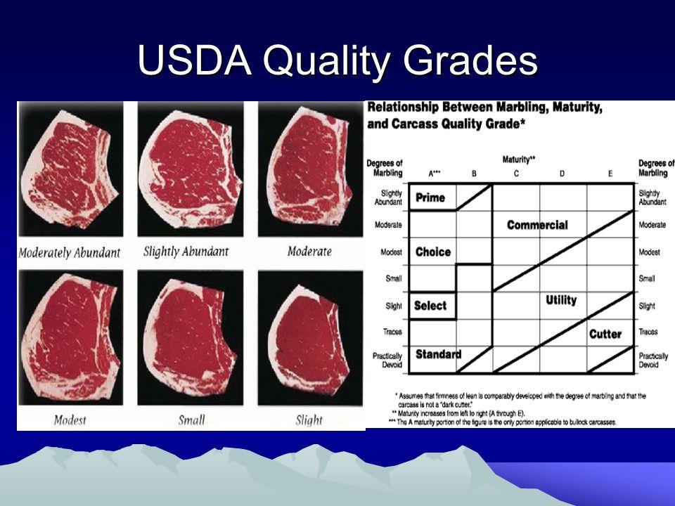 USDA Quality Grades